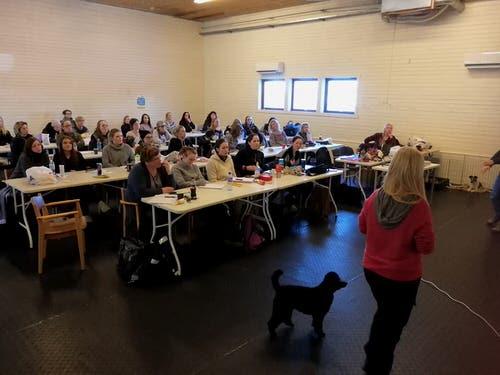 Hundetrenerutdannelse